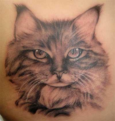 Srdjan_tattoo___cat_portrait_by_srdjantattoo
